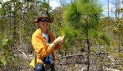 Photo of Michele Sanchez with a Caicos pine