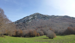 Mountain in distance