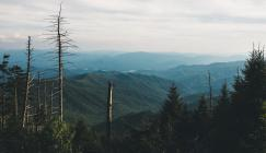Southern Appalachia, Wes Hicks/Unsplash