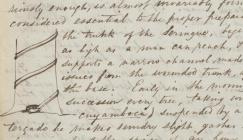 Photo of an extract from a letter from Richard Spruce