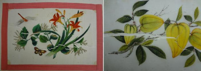 Photo of Ward paintings before treatment
