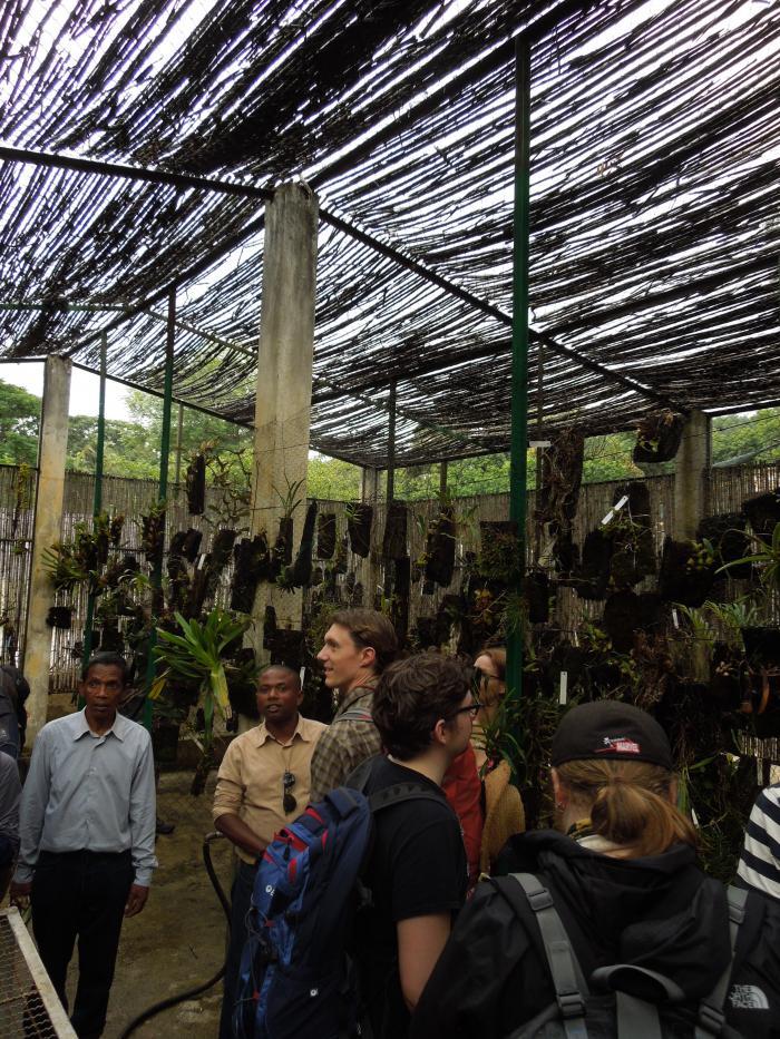 Image showing the orchid nursery at Parc Tsimbazaza