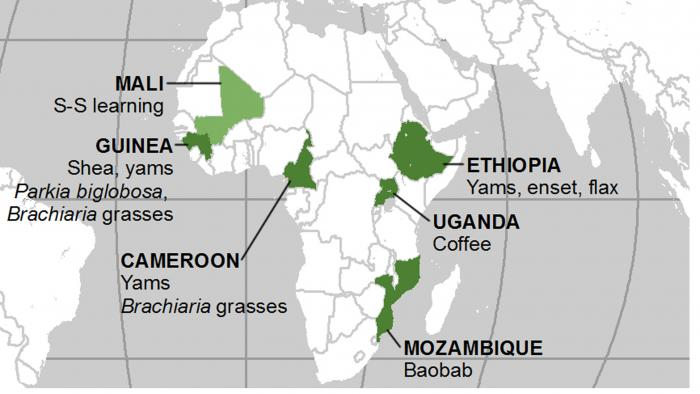 Map showing research needs identified by African partners
