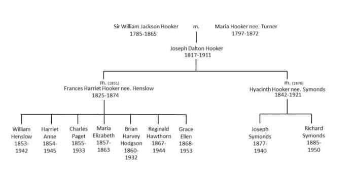 Hooker family tree