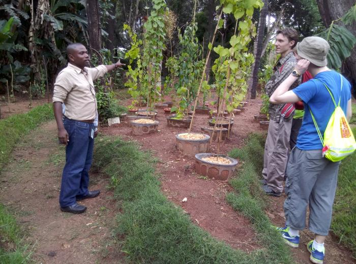 Image showing Parc Tsimbazaza staff explain the Dioscorea conservation project. Top part of 'Madagascar' visible.
