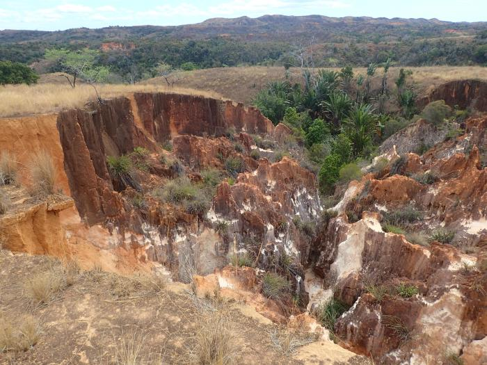 Image showing eroded landscape surrounding Amparahibe, with fragments of vegetation in valleys and ravines