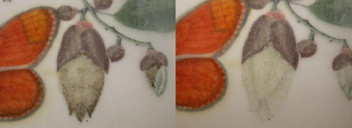 Photo of a detail of a flower before and after conservation