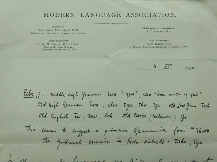 Letter from the Modern Language Association regarding the etymology of the word yew