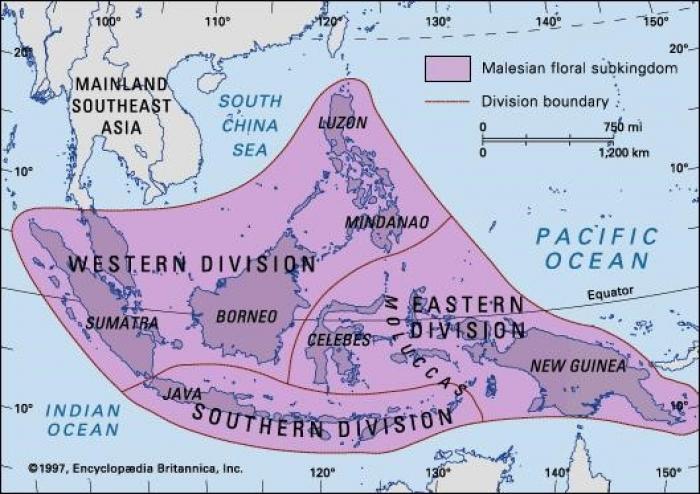 Map showing Malesian subkingdom: boundaries and regions of the Malesian floral subkingdom