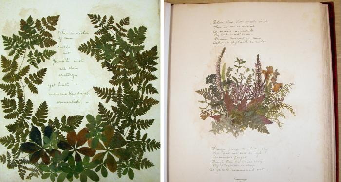 Photo of inner pages showing a pressed plant and poetry