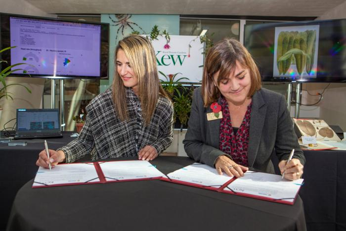 Prof Kathy Willis, Director of Science at Kew and Yaneth Giha, Director of Colciencias sign the statement of intent (©Trustees of the Natural History Museum, London)