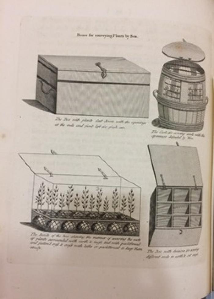 Illustrations of various pre-nineteenth century methods of plant transportation