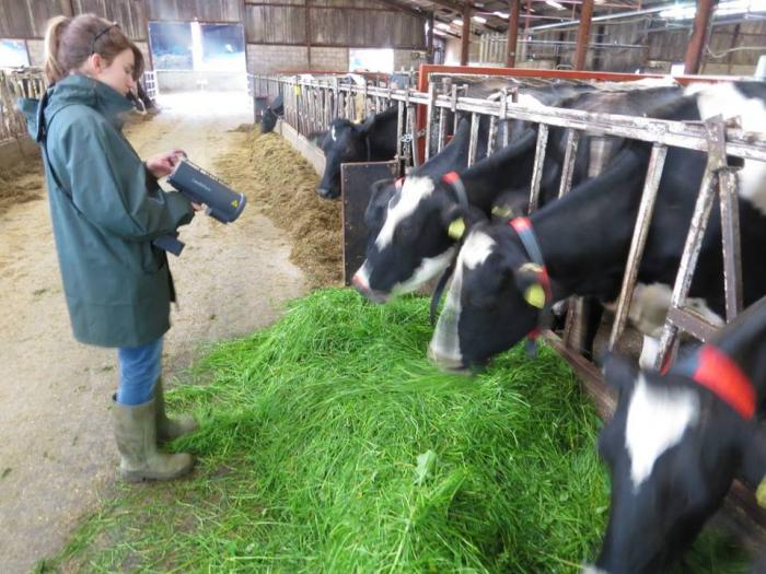 Image showing a student using a laser detector to measure methane in the breath of dairy cows