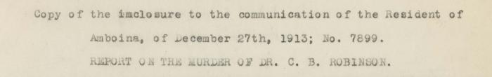 Extract from CB Robinson murder report