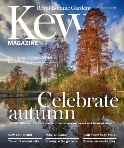 The cover of Kew's autumn magazine