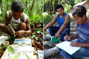 Field training in botanical collection (left) and ethnobotanical data recording (right) (Images: W. Milliken)