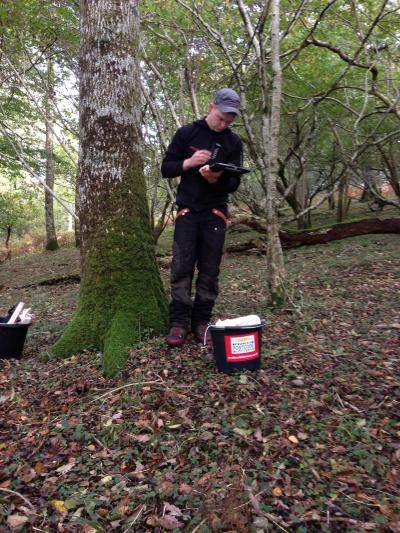 Recording site data on a UK National Tree Seed Project (UKNTSP) collecting trip