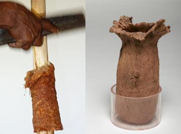 Demonstration of bark cloth removal from Brosimum utile (left); bark cloth bag collected by Richard Spruce (right) (Image: RBG Kew)